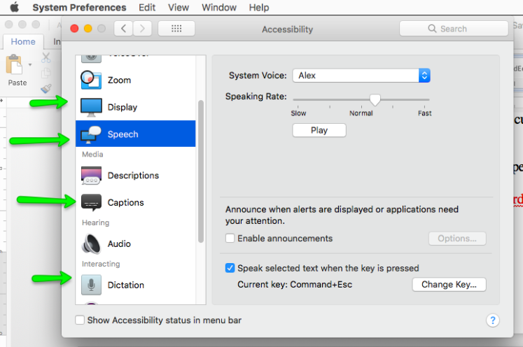 This is an image of the accessibility features on the Mac OS of Beckett Haight